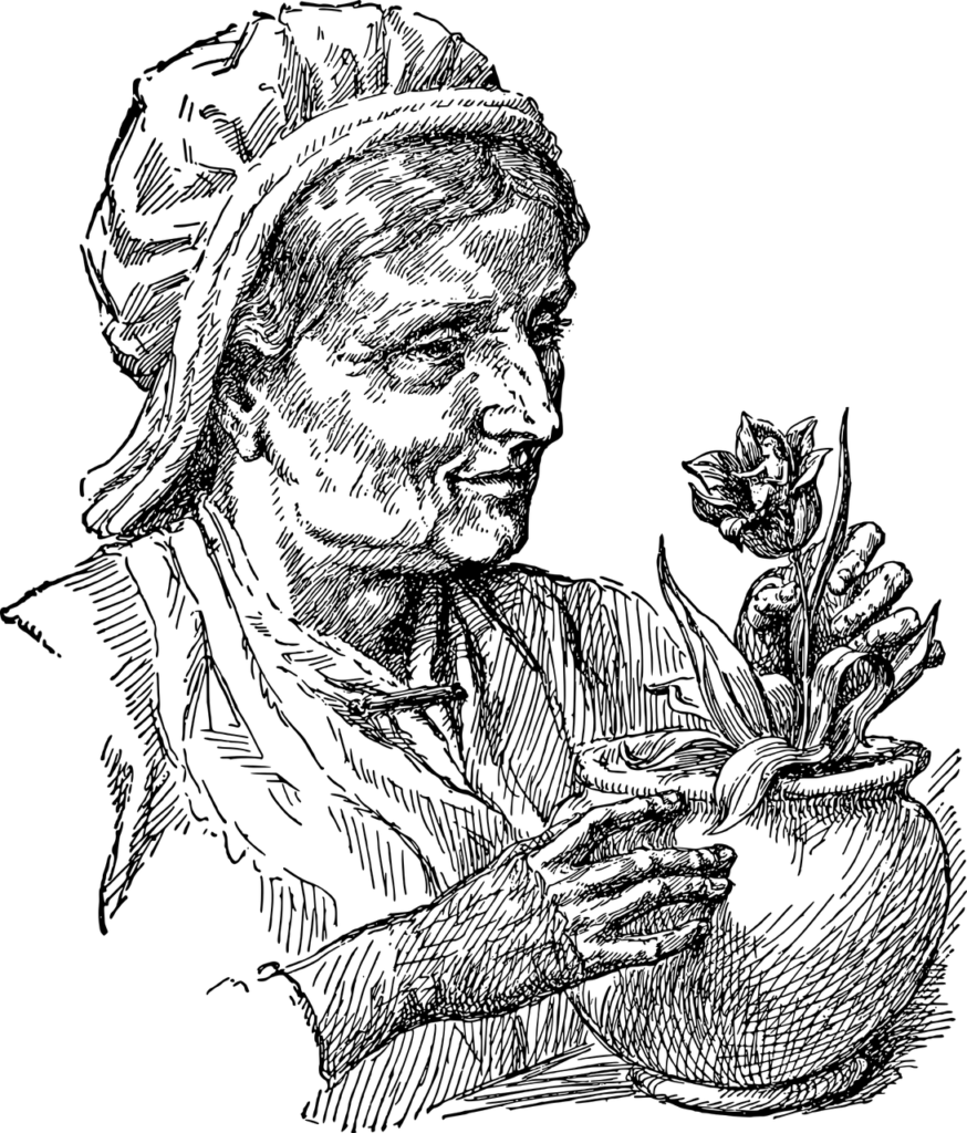 Die Tantenburg